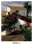 Courtyard Blossoms Prints by Poch Romeu
