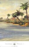 Caribbean Shores I Affiche par Jeff Surret