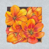 Blumen an deinem Fenster I Poster von S. Vollamt
