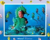 Water Babies, Seahorse Láminas por Tom Arma