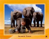 Elefante de safari imaginario Arte por Tom Arma
