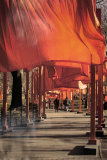 The Gates, Photo No. 26 Poster by  Christo