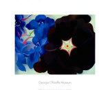 Schwarze Malve, Blauer Rittersporn Poster von Georgia O'Keeffe