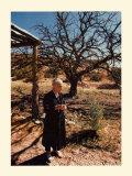 O'Keeffe mit Baum Kunst von  Springmann