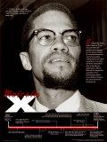 Malcolm X Kunstdrucke