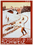 Winter Sport in Der Schweiz Poster van P. Colombi