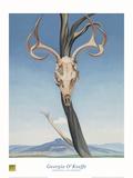 鹿の頭蓋骨とぺダーナル 高品質プリント : ジョージア・オキーフ