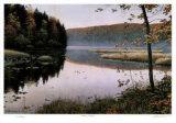 Autumn Shores Limitierte Auflage von J. Vanderbrink