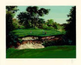 Merion  16 Collectable Print by Mark King