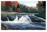 Gull River Falls Sammlerdrucke von J. Vanderbrink