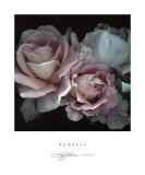 Romance Prints by S. G. Rose