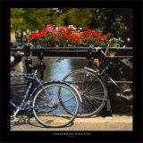 Amsterdam, Holland Posters par Stuart Black