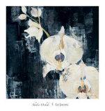 Shadow Orchids I Plakater av Elizabeth Jardine