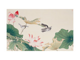 Birds by Lotus Pond Giclee Print by Hsi-Tsun Chang