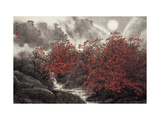 Autumn Mist Giclee Print by Baogui Zhang