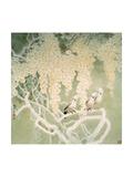 Glorious Spring Reproduction procédé giclée par Minrong Wu