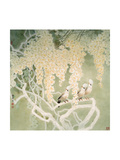 Glorious Spring Giclee Print by Minrong Wu