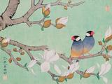 Twin Birds in the Branches Reproduction procédé giclée par Hsi-Tsun Chang