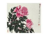 Peonies in Spring Lámina giclée por Hsi-Tsun Chang