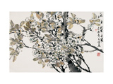 Plum Blossoms after Rain Giclee Print by Wanqi Zhang