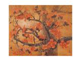 Kapok Giclee Print by Chenwen Chang