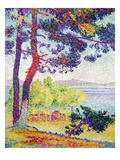 Afternoon at Pardigon, Var, 1907 Giclee Print by Henri Edmond Cross