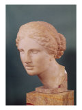 The Kauffmann Head, Head of Aphrodite, Copy of the Aphrodite of Cnidus by Praxiteles (Fl.375-40 BC) Lámina giclée por  Praxiteles