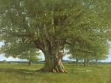 The Oak of Flagey, Called Vercingetorix Reproduction procédé giclée par Gustave Courbet
