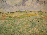 The Plain at Auvers, c.1890 Giclée-Druck von Vincent van Gogh