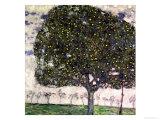 The Apple Tree, 1916 Reproduction procédé giclée par Gustav Klimt