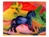 Little Blue Horse, 1912 Giclée-tryk af Franz Marc