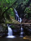 Elabana Falls Photographic Print by Bill Ross
