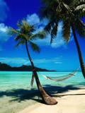 Hammock Hanging Seaside Premium fotografisk trykk av Randy Faris