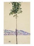 Petit arbre (châtaignier au lac Constance) Reproduction procédé giclée par Egon Schiele