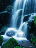 Waterfall in Yosemite National Park Photographic Print by Bill Ross