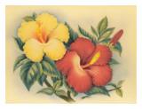 Hawaiian Hibiscus Giclee-trykk av Eve Hawaii