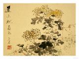 Chrysanthemums, A Leaf from an Album of Various Subjects Gicléedruk van Xu Gu