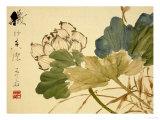 Lotus Gicléedruk van Xu Gu