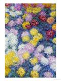 Chrysanthemums, 1897 Giclée-tryk af Claude Monet