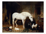 Stable Companions Giclée-tryk af John Frederick Herring I