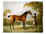 Tristram Shandy, a Bay Racehorse Held by a Groom in an Extensive Landscape, circa 1760 Giclée-tryk af George Stubbs