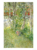 A Nap Outdoors Giclée-tryk af Carl Larsson