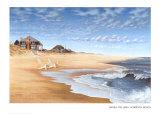 Hampton Beach Láminas por Daniel Pollera