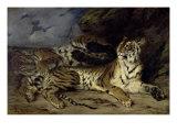 Jeune Tigre Jouant Avec Sa Mere Giclée-tryk af Eugene Delacroix