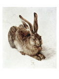The Young Hare Giclée-tryk af Albrecht Dürer