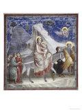 Flugten til Egypten Giclée-tryk af  Giotto di Bondone