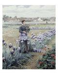 The Flower Fields Giclee Print by Daniel Ridgway Knight
