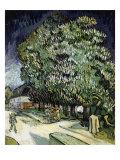 Chestnut Trees in Blossom Giclee-trykk av Vincent van Gogh