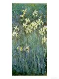 The Yellow Irises Giclee-trykk av Claude Monet