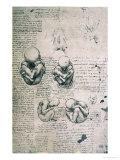Five Views of a Foetus in the Womb, Facsimile Copy Giclee Print by  Leonardo da Vinci